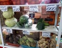 В Павлодаре объяснили подорожание овощей