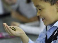 Мотивировать школьных учителей госнаградами предлагают в Казахстане