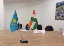Павлодарский регион привлек индийских инвесторов дешевой электроэнергией