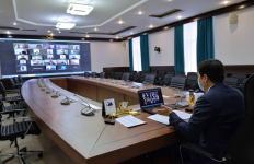 Павлодарскому экосовету предложили заняться вопросами машин на газонах и детских площадках во дворах