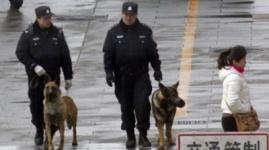 Кепи вместо фуражек наденут универсальные полицейские в Казахстане