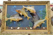 Необычные картины из рыб показал художник Иртышского района