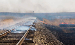 В Прииртышье произошел пожар около железной дороги