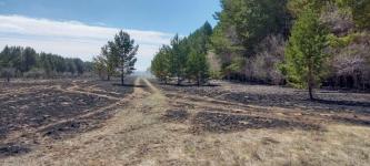 Крупный пожар в Щербактинском районе удалось потушить
