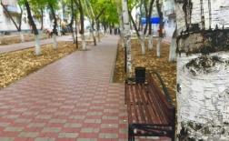 Обновленный сквер Володарского презентовали ко дню пожилого человека